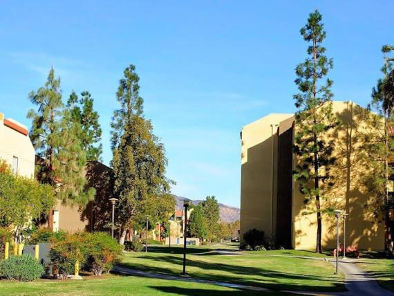 Embassy Summer California State University